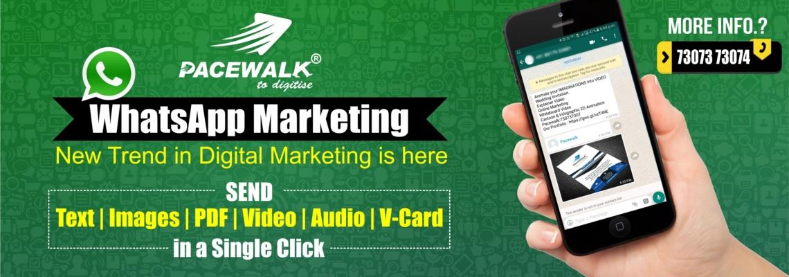 Whatsapp Marketing Bulk sms Pacewalk